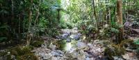 Take a refreshing break from your trek at the cool streams and natural pools