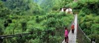 The lush valleys of far western Nepal   Michelle Landry